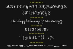 Brilliance Script Product Image 6
