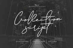 10 Font Script Collection + doodlee art Product Image 1