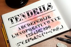 Tendrils font Product Image 4