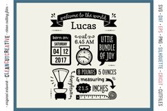 BIRTH STATS TEMPLATE - Baby Birth Announcement - SVG file Product Image 1