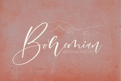 Bomtrys Script Font & Illustrations Product Image 3