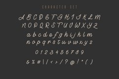 Lostown Monoline Script Product Image 4