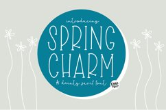 SPRING CHARM Dainty Serif Font Product Image 1