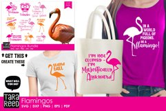 Flamingo Bundle Product Image 2
