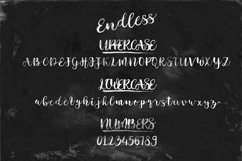 Endless Script Product Image 3