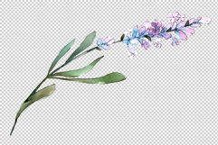 Bouquet of idyll lavender Watercolor png Product Image 3