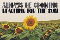 Sunflower - A Sunflower Duo Font Product Image 6
