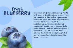 Fresh Blueberry Product Image 2