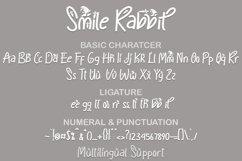 Smile Rabbit Product Image 4