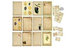 Kitchen Apples Journal Scrapbook Kit PDF Product Image 3