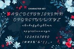Web Font Snokey Product Image 6