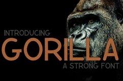Gorilla  Product Image 1