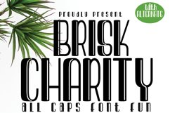 Brisk Charity Product Image 1