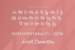 Birdlove Lovely Handwritten Font Product Image 6