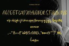 Web Font Bookstore - A Script Font Product Image 5