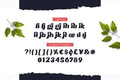 Moilgo - Beautiful Bold Font Product Image 6