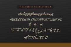 Lambrela Product Image 6