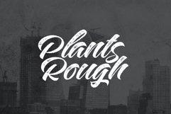 Plants FontDuo Product Image 5