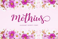 Web Font Mini Bundles Craft Fonts $1/Font Product Image 5