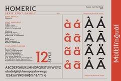 Homeric- Serif font Family Product Image 3