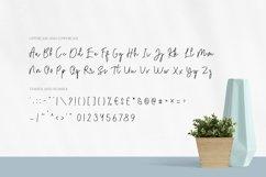 Lemenso - Handwritten Script Typeface Product Image 3