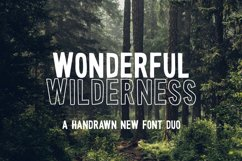 Wonderful Wilderness Font Duo Product Image 1