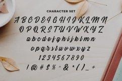 Web Font Creativa Product Image 5