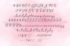 Zaspany Script Product Image 3