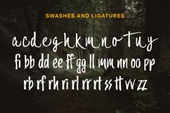 Trailmade Font Family Product Image 3
