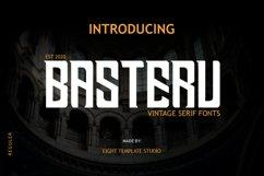 BASTERU - Modern Serif Product Image 1