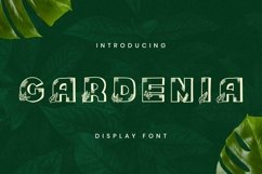 Web Font Gardenia Font Product Image 1