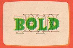 Halau Serif Product Image 4