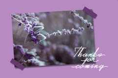 Real Violet - Signature Style Font // Web Font Product Image 6