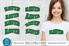 Hawks svg, Hawk svg, hawks baseball svg, hawks football svg Product Image 1
