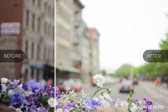 Matte & Pastel Lightroom Presets Product Image 4