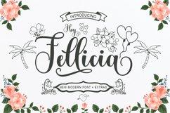 Hey Fellicia Product Image 1