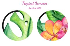 Tropical Summer Product Image 2