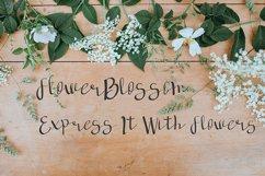 deep forest script handwritten font Product Image 4