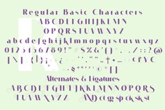 VOGUER Sans Product Image 3