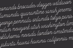Plandscape smooth monoline font Product Image 5