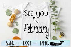See you in February- Baby, Pregnancy Announcement Product Image 1