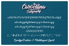 Caroollina Product Image 4