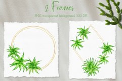 Aloe Vera Clipart. Watercolor Succulent PNG Collection Product Image 4