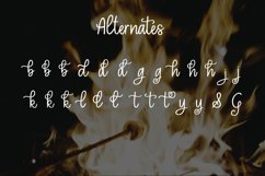 Toasted Marshmallow - A handlettered script font Product Image 5
