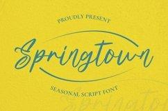 Web Font Springtown Font Product Image 1