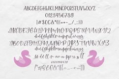 Web Font Pink Swan Font Duo Product Image 6