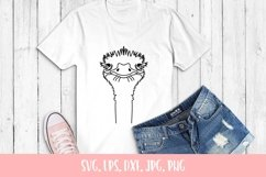 Cute Ostrich Svg File Product Image 2