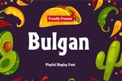 Web Font Bulgan Display Font Product Image 1
