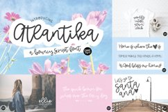 Hand Lettered Font Bundle by Dixie Type Co. Product Image 2