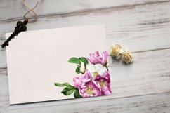 Wild roses clipart. Pink and white roses bouquets. Product Image 4